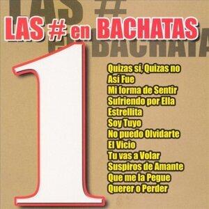 Bachatas All Stars 歌手頭像