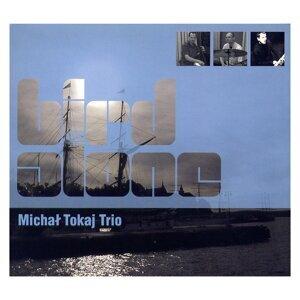 Michal Tokaj Trio 歌手頭像