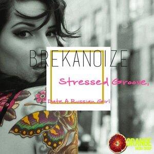 Brekanoize 歌手頭像