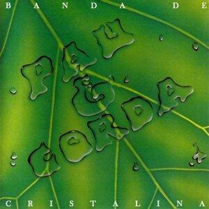 Banda de Pau & Corda 歌手頭像