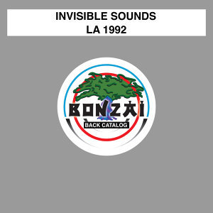 Invisible Sounds