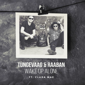 Tungevaag & Raaban 歌手頭像