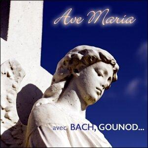 Ave Maria, Meditation 歌手頭像