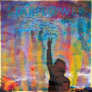 Starflower 歌手頭像