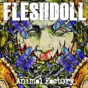 Fleshdoll 歌手頭像