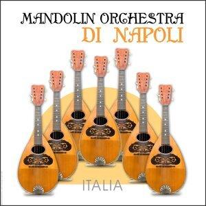 Angelo Petisi & The Mandolin Orchestra di Napoli 歌手頭像