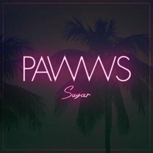Pawws 歌手頭像