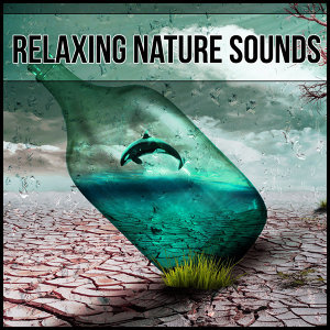 Beautiful Nature Music Paradise 歌手頭像