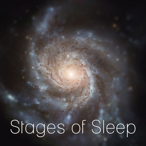 Stages of Sleep Music Universe 歌手頭像
