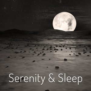 Natural Sleep Aid Collective 歌手頭像