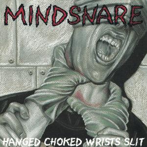 Mindsnare 歌手頭像