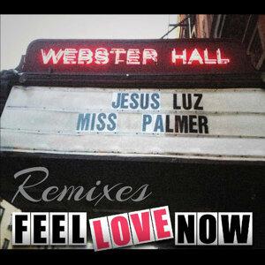 Miss Palmer,Jesus Luz 歌手頭像
