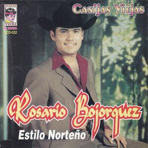Rosario Bojorquez 歌手頭像