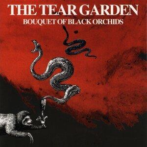 The Tear Garden 歌手頭像
