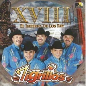 Tigrillos 歌手頭像