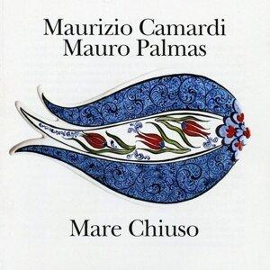 Maurizio Camardi & Mauro Palmas 歌手頭像