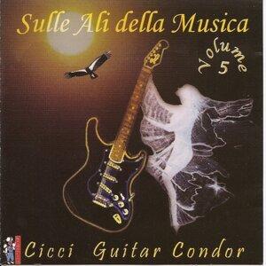Cicci Guitar Condor 歌手頭像