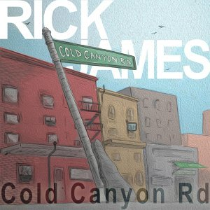 Rick James 歌手頭像