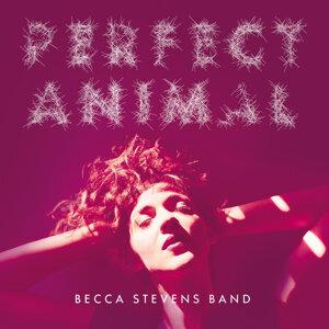 Becca Stevens Band 歌手頭像