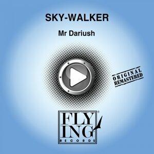 Sky-Walker 歌手頭像