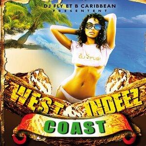 DJ Fly, B Caribbean 歌手頭像