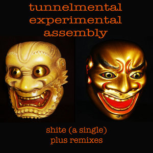 Tunnelmental Experimental Assembly 歌手頭像
