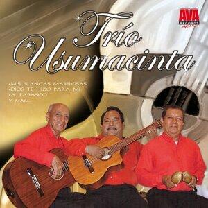 Trio Usumacinta 歌手頭像