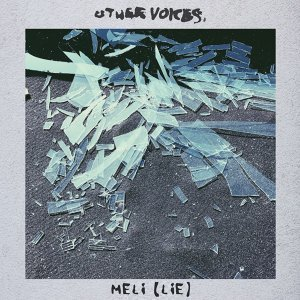 Other Voices 歌手頭像