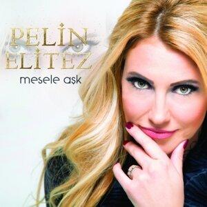 Pelin Elitez 歌手頭像
