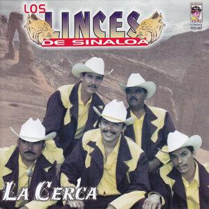 Los Linces De Sinaloa 歌手頭像