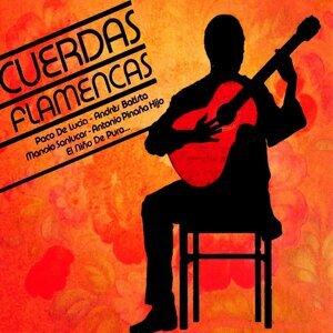 Cuerdas Flamencas 歌手頭像