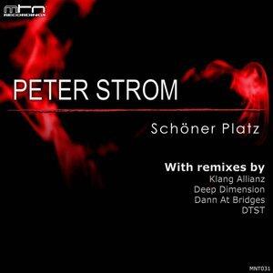 Peter Strom 歌手頭像
