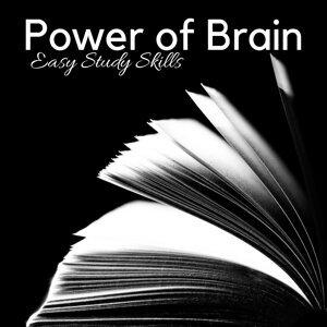 Brain Power Ensemble 歌手頭像