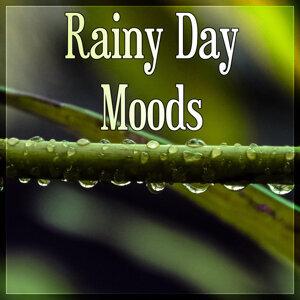 Rainy Mood Academy 歌手頭像