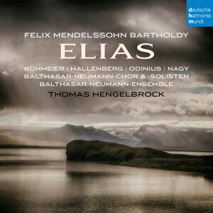 Thomas Hengelbrock 歌手頭像