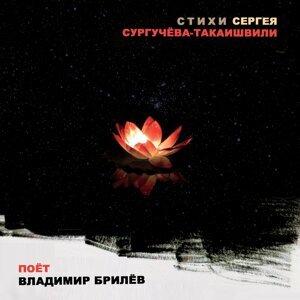 Владимир Брилёв 歌手頭像