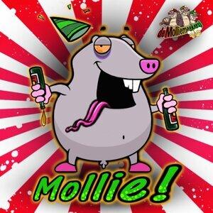 De Molliemeekersj 歌手頭像