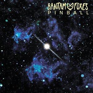 Bantam Foxes 歌手頭像