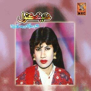 Hasina Kanwal 歌手頭像