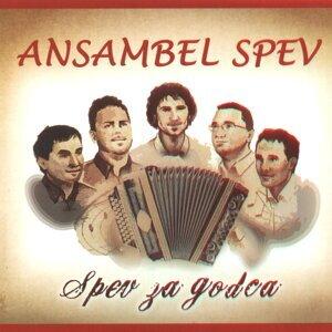 Ansambel Spev