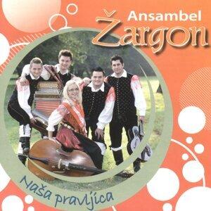 Ansambel Žargon 歌手頭像