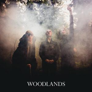 Woodlands 歌手頭像