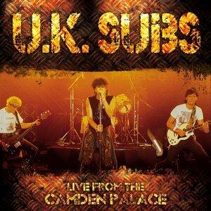 U.K. Subs 歌手頭像