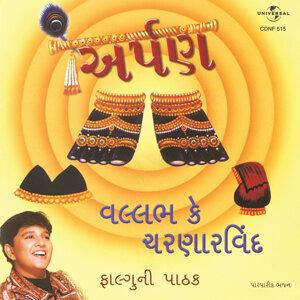 Falguni Pathak 歌手頭像