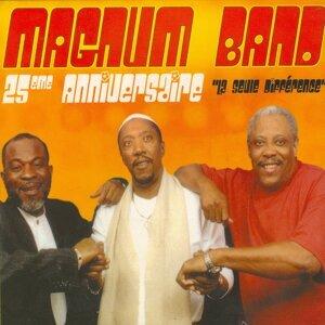 Magnum Band アーティスト写真