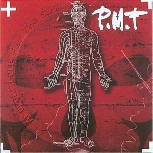P.m.t 歌手頭像