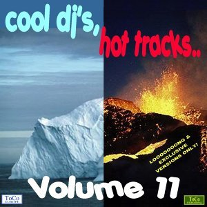 Cool dj's, hot tracks - vol. 11 歌手頭像
