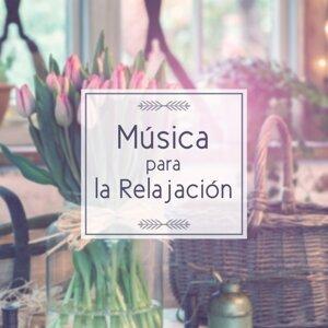 Musica Relajante Oasis 歌手頭像