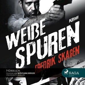 Fredrik Skagen 歌手頭像