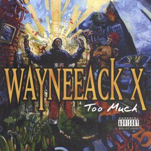 Wayneeack X 歌手頭像